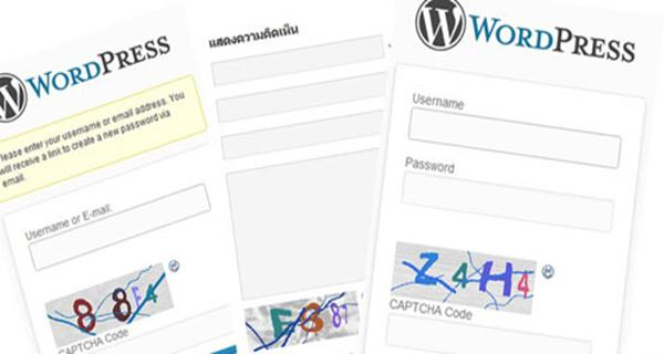 best wordpress plugin for donations