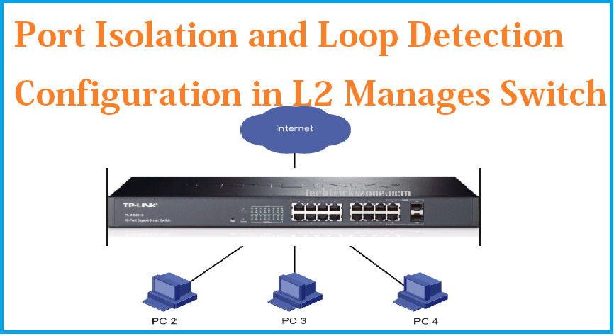 Port isolation and loop detection configuration