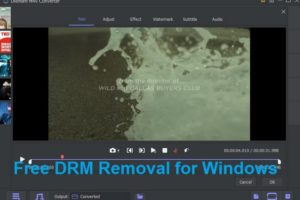 The best DRM M4V Converter for Windows