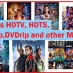 What is HDTC, HDTS CAMRIP, DVDRIP, HDTV